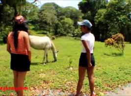 مواقع سكس حصان مع بنات