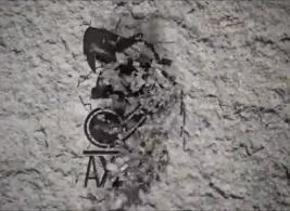 نيك قحاب عربCOM XNXX